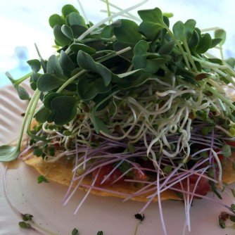 Tostada with Ojai Microgreens